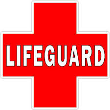 Lifeguard Courses at South Dearborn High School
